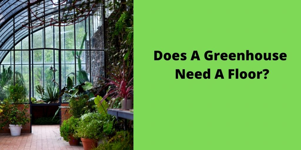 Does-A-Greenhouse-Need-A-Floor_